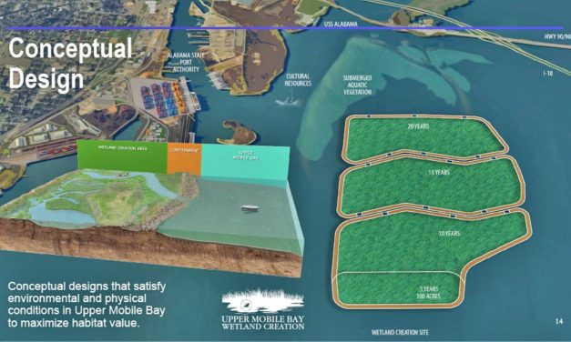 Plan unveiled for 1,200-acre 'Upper Mobile Bay Wetland Creation' project
